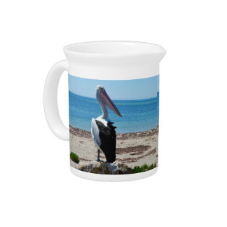 Pelikan auf Strand-Felsen, Getränke Pitcher