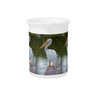 Pelikan Krug