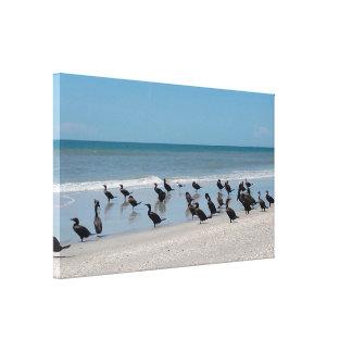 Pelikan-Strand ausgedehnter Leinwand-Druck Leinwanddruck