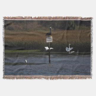 Pelikan-Vogel-Reiher-Tier-Tier-Decke Decke