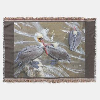 Pelikan-Vogel-Tier-Tier-Ozean Decke