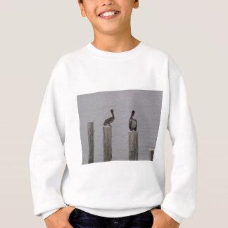 Pelikane 3 sweatshirt