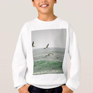 Pelikane an Horsfall Strand, Oregon Sweatshirt
