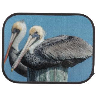 Pelikane, die auf Mast roosting sind Automatte