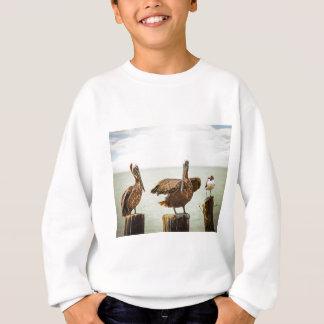 Pelikane gehockt auf Posten Sweatshirt