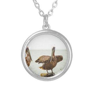 Pelikane gehockt auf Posten Versilberte Kette