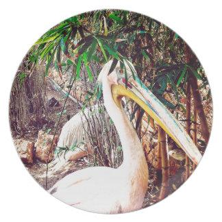 Pelikane Teller