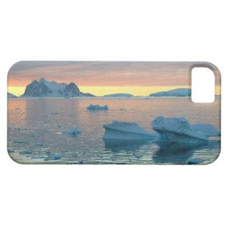 Peltier-Kanal im letzten Licht des Tages iPhone 5 Schutzhüllen