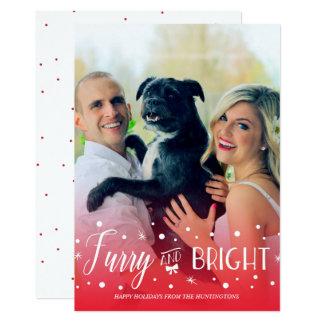 Pelz- u. hell - Haustier-WeihnachtsFoto 12,7 X 17,8 Cm Einladungskarte