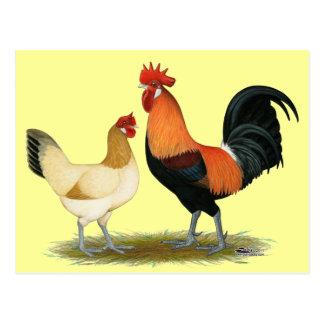 Penedesenca Hühner Postkarten