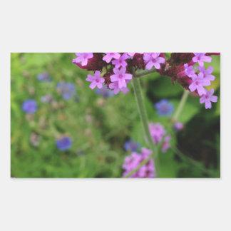 Penland lila Blume: Sallie durch meine Seite Rechteckiger Aufkleber