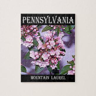 Pennsylvania-Berglorbeer Puzzle
