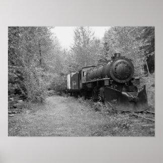Pensionierter Dampf-Zug Poster