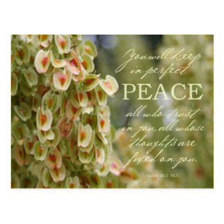 Perfekte Friedenspostkarte Postkarte