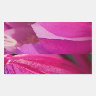 Perfekte rosa Verführung: Romantische Rechteckiger Aufkleber