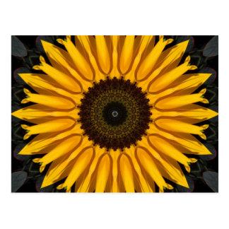 Perfekte Sonnenblume Postkarte