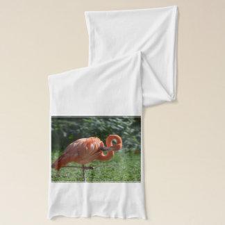 Perfekter rosa Flamingo Schal