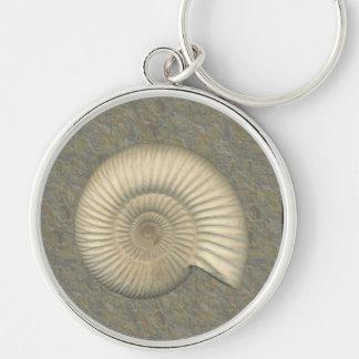 Perisphinctes Ammonit Schlüsselanhänger