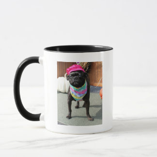 Perle - Mops und Boston-Terrier-Mischungs-Zucht Tasse