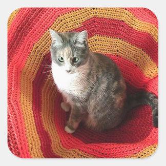 Perlen-Katze auf Afghanen Quadratischer Aufkleber