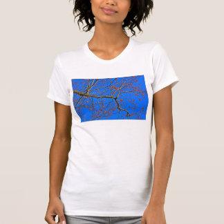 Persimonen T-Shirt