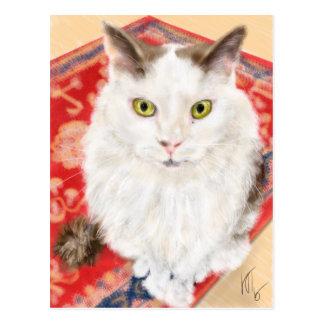 Persian cat on a red Persian carpet