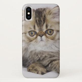 Persische Katze, Felis catus, BrownTabby, iPhone X Hülle