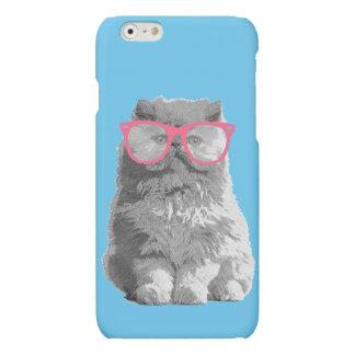 Persische Katze mit rosa Glas-niedlichem lustigem