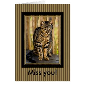Personalisiert: Schildpatt-Katzen-Tier-Foto Karte