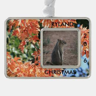 Personalisierte Touch des Falles addieren Foto Rahmen-Ornament Silber