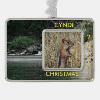 Personalisierter Fluss addieren Foto Rahmen-Ornament Silber