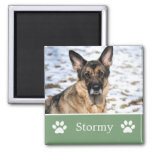 Personalisierter grüner Haustier-Foto-Magnet Magnets