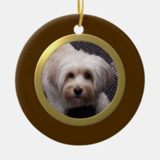 Personalized Pet Photo Frame (Brown/Gold)