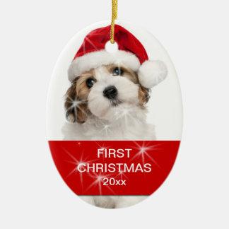 Personalisiertes Haustier-erstes WeihnachtsFoto Keramik Ornament
