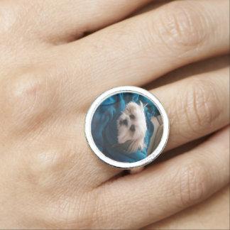 Personifizieren Sie Ihren eigenen Fotoring Ring