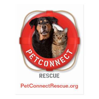 PetConnect Rettung Postkarte