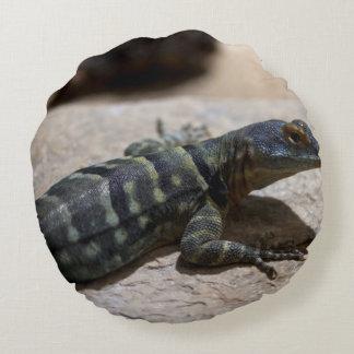 Petrosaurus thalassinus rundes kissen