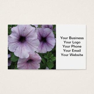 Petunie-lila Weiß Visitenkarte