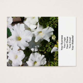 Petunie-Weiß-Blume Visitenkarte
