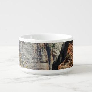 Pfadfinder-Ausblick Zion Nationalpark Utah Kleine Suppentasse