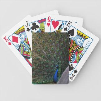 Pfau Bicycle Spielkarten