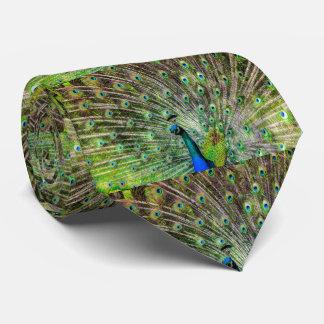 Pfau-Federn Krawatte