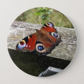 Pfau-Schmetterling Runder Button 10,2 Cm