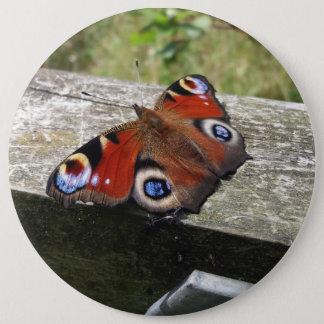 Pfau-Schmetterling Runder Button 15,3 Cm