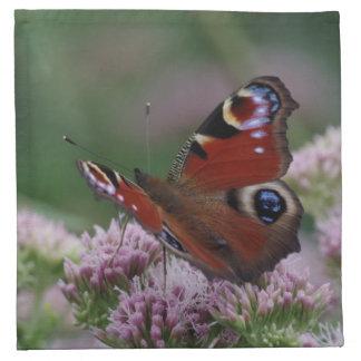 Pfau-Schmetterlings-Stoff-Servietten Stoffserviette