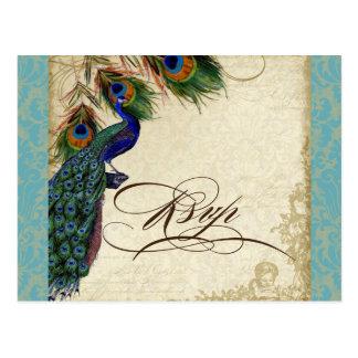 Pfau u. Feder-formale Hochzeit UAWG Antwort Postkarte