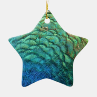 Pfau versieht bunten abstrakten Natur-Entwurf I Keramik Stern-Ornament