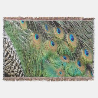Pfau versieht grüne und blaue Farben TANs mit Decke
