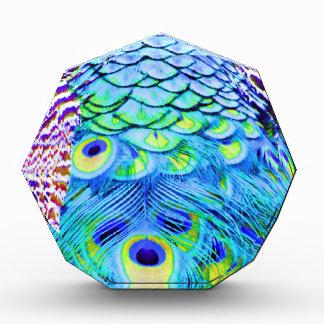 Pfau versieht multi Farben mit Federn Acryl Auszeichnung