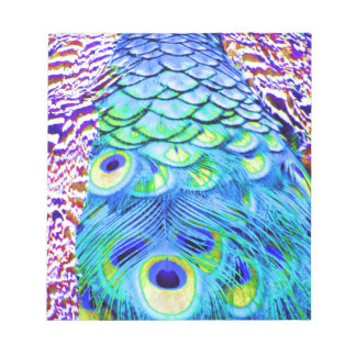 Pfau versieht multi Farben mit Federn Notizblock